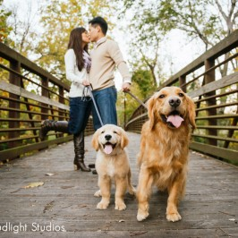 Nashville Dog Photography | Kona & Owen