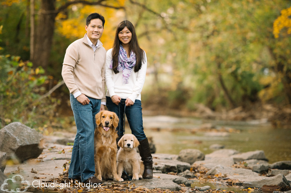 Family with Dogs Photos