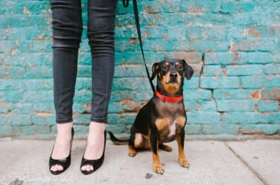 Nashville Pet Photography | Andrea & Oliver