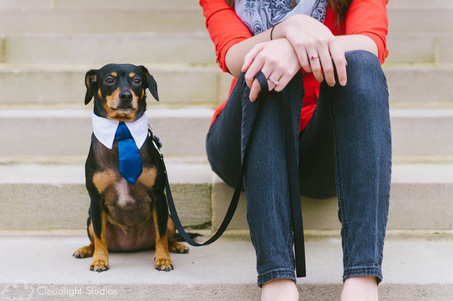 Pet Portrait in Downtown Nashville